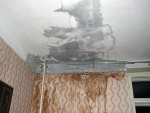 Щели и протечки в крыше